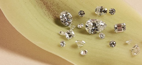 Round and Fancy loose diamonds by Facets Singapore